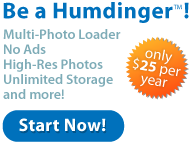 Sign Up - Humdinger
